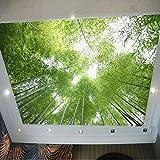 Yosot 3d Grüner Bambus Blauer Himmel Landschaft Decke Fototapete Wandbild Für Wohnzimmer Ktv Bar Wand Dekor Gemälde Landschaft-140 Cmx100Cm