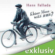 """Hans Fallada – """"Kleiner Mann - was nun?"""""""