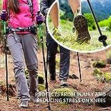 Terra Hiker Wanderstock, Faltbarer Trekkingstock, Leicht und Einstellbar, Perfekt für Trekking und Wanderung (Ein Stock Nur) -