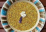 Pollen d'abeilles nettoyé a la main. Frais. 2 kg. Provient directement de l'apiculteur polonais.