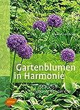 Gartenblumen in Harmonie: Stauden gekonnt kombinieren