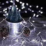 HJ® 600 LEDs 60M Kaltweiß LED Lichterkette Weihnachtslichterkette 31V String Außenlichterkette für Xmas Halloween innen&außen Garten