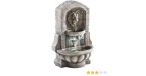 Fontaine au Lion Fontaine dambiance avec LED et pompe