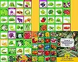 #8: SAHAYA 66 Varieties (6200 + Seeds) Vegetables, Fruits & Flowers Seed
