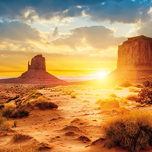 Apple iPhone SE Case Skin Sticker aus Vinyl-Folie Aufkleber Sonnenuntergang Amerika Wüste DesignSkins® glänzend