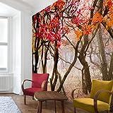 Apalis Waldtapete Vliestapete Japan im Herbst Fototapete Quadrat | Vlies Tapete Wandtapete Wandbild Foto 3D Fototapete für Schlafzimmer Wohnzimmer Küche | Größe: 288x288 cm, braun, 97761