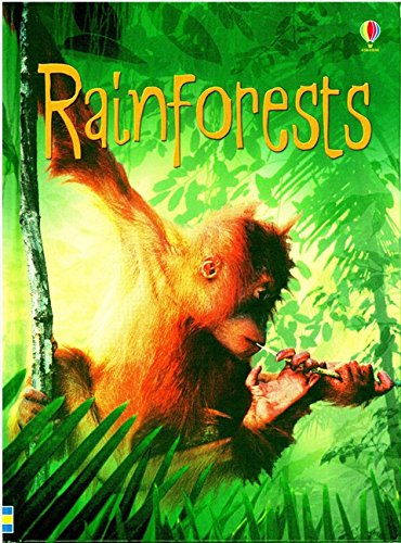 Rainforest (Beginners Series) por Catriona Clarke