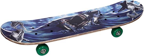 Klapp Skateboard, Colour may be Vary