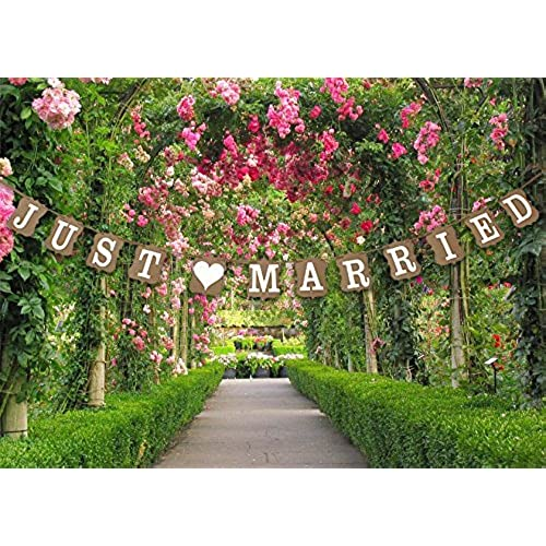 Wedding decorations for reception amazon stonges just married wedding bunting cardboard wedding decoration vintage junglespirit Image collections