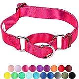 Blueberry Pet Sicherheitstraining Martingale Hundehalsband Klassisch Einfarbig 2 cm M Basic Nylon Hundehalsband Langlebig - Französisch-Pink