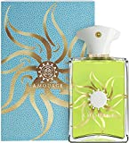 Amouage Sunshine Man Eau de Parfum Spray 100 ml