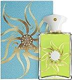 Amouage Sunshine Man Eau de Parfum en flacon vaporisateur 100ml