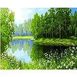 Fairylove 16 * 20 Zoll Malen nach Zahlen DIY Ölgemälde,Frühling Wald