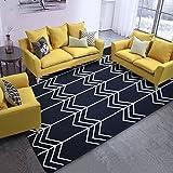 DULPLAY Stripe Teppich,Bereichs-wolldecke,Schwarz-weiß Europa Einfache Sofa-Seite Kinder-Matte Pflegeleicht Wohnzimmer Schlafzimmer Boden Waschbar -A 160x230cm(63x91inch)