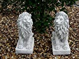 Mehrholz Steinfigur Löwe Löwenpaar Links und rechts schauend grau patiniert