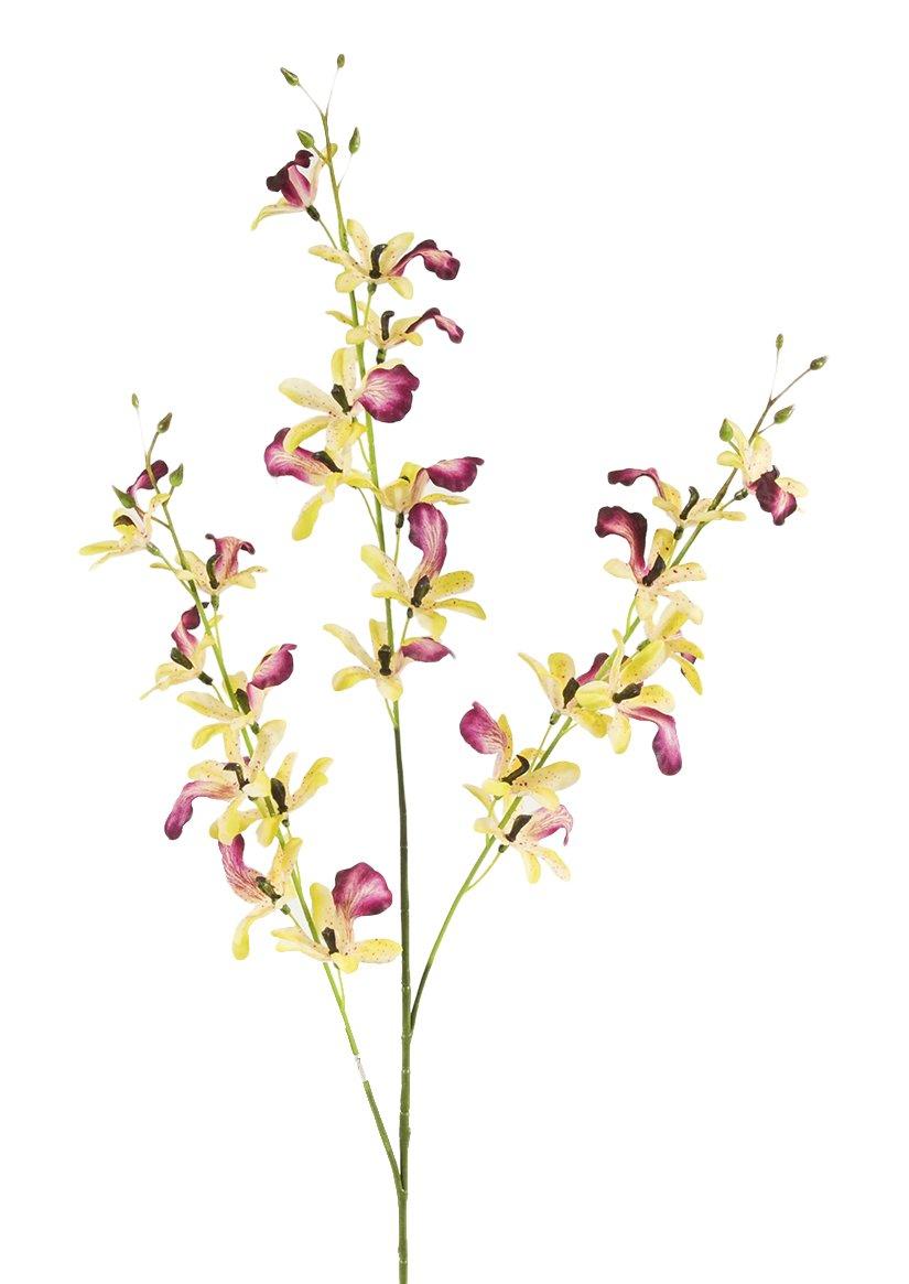 Bianchi Dino, Orquídea 3piezas, Sintético, Rojo (CRN/MAUVE hwh5021), 10x 23x 94cm
