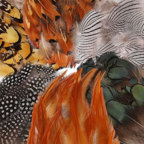 180Pcs 6 Estilos Plumas Artesanales Surtidas, Mwoot Plumas de pollo naturales para DIY Pendiente Alas Dream Catcher Artesanía Actividades Boda Decoración del hogar Fiesta