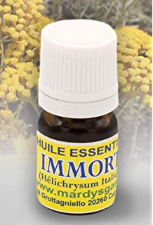 he immortelle rides