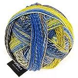 Schoppel-Wolle Zauberball 6-lagig–Sanduhr, mehrfarbig