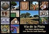Via de la Plata - auf dem Jakobsweg von Sevilla nach Santiago (Wandkalender 2019 DIN A3 quer): Pilgern auf einer alten Römerstraße - 1000 km zu Fuß ... (Monatskalender, 14 Seiten ) (CALVENDO Natur) - Rina B.