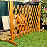 Best Privacy Fences - Expanding Fence Garden Screen Trellis Style Expands to Review