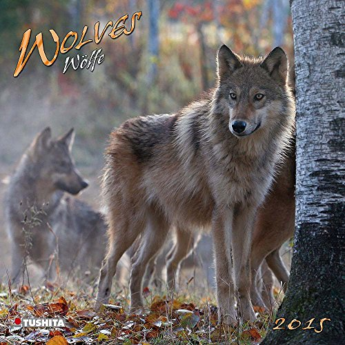 Wolves 2015 What a Wonderful World