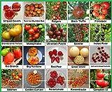 Tomaten Set 2 :: Historische alte Tomatensorten 20...