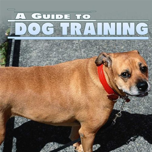 Dog Training System - Part 1 (Training 1 Dog)