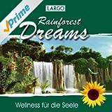 Rainforest Dreams - Stimmungsvolle Naturgeräusche Mit Entspannungsmusik (Gema-Frei)