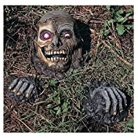 ‏‪Rubie's Costume Grave Evader Full Skull with Two Hands Yard Décor‬‏