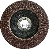 Geko g00303Aluminiumoxid-Fächerscheibe 125mm Körnung 40(12Stück)