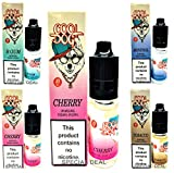 COOL DOG Ecig E Liquid Vape Juice Pack of 10 x 10ml = 100ml Fruity Flavours Eliquid Refills No Nicotine Electronic Cigarette Shisha CE4 Ejuice Smooth Vapour Classic 0mg Zero Nic VG30 PG70 Fluid Oil (COOL DOG 10 X 10ML MENTHOL)