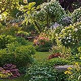 Gärten 2018 - Gardens - Broschürenkalender (30 x 60 geöffnet) - Wandplaner
