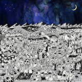 Pure Comedy (2LP+MP3) [Vinyl LP] [Cover Bild kann abweichen]