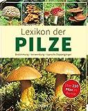 Lexikon der Pilze: Bestimmung, Verwendung, typische Doppelgänger - Über 210 Pilze im Porträt