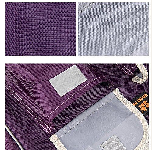 B-JOY Dog Box Car Dog Transport Box Transport Bag Handbag S M L Pet Dog Dog and Cat Airline Approved (L(45*18*30cm… 6