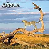 Africa - Afrika 2019 - 18-Monatskalender mit freier TravelDays-App: Original BrownTrout-Kalender