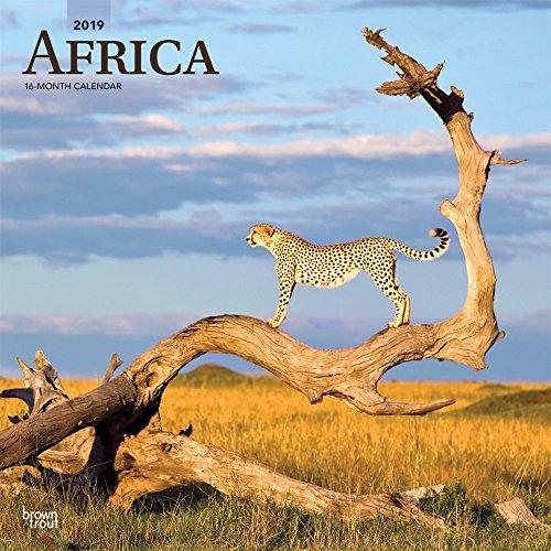 Africa - Afrika 2019 - 18-Monatskalender mit freier TravelDays-App (Wall-Kalender)