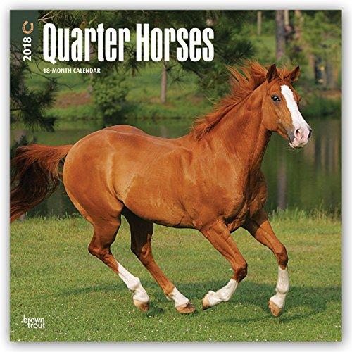 Descargar Libro Quarter Horses 2018 - 18-Monatskalender: Original BrownTrout-Kalender de Browntrout Publishers