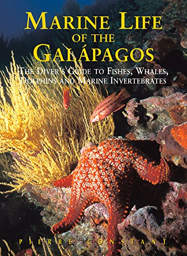marine-life-of-the-galapagos-the-divers-guide-to-fish-whales-dolphins-and-marine-invertebrates-odyss