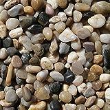 #1: Tiedribbons&Reg; Vase Filler Stones Pebbles for Garden Decoration and Aquarium(1 Kg,Multicolor)
