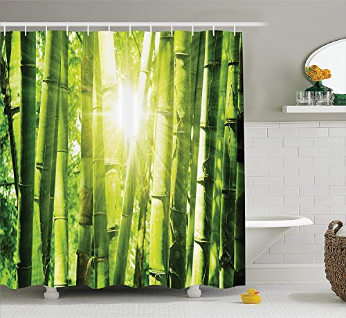 ower Curtain Set, Asian Bamboo Forest with Morning Sunlight Sun seen Through Trees Jungle Scene, Bathroom Accessories, 72x72 inches Extralong ()