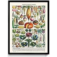 Suchergebnis auf Amazon.de für: gemüse poster: Küche, Haushalt & Wohnen