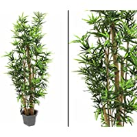 Suchergebnis auf f r bambusrohre kunstblumen pflanzen wohnaccessoires deko - Bambusrohre deko ...
