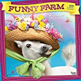 Avanti Funny Farm 2019 Square Foil