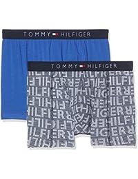 Tommy Hilfiger 2p Brief Print, Bóxer para Hombre, Multicolor (Navy Blazer/Dazzling Blue 901), Medium