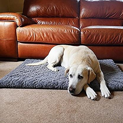 Rosewood Small dog bed for small dogs, cat and kittens, machine washable, super soft and cosy plush dog mattress, grey… 1