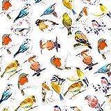 CAOLATOR 45 Blatt Aufkleber Set mit Vogel Muster, Kinder Mädchen Stickers aus Papier für Scrapbooking Stickerbuch Tagebuch Fotoalbum Notizbuch Kalender Dekoration