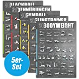 WINDHUND Fitness Poster 5er-Set