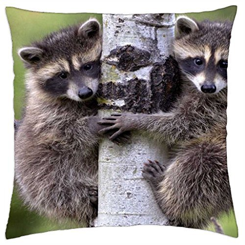 mike-and-ike-throw-pillow-cover-case-18